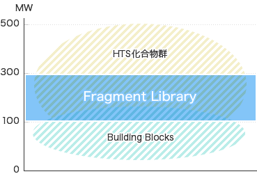 Fragment Library​